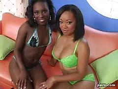 Two Black Lesbians Nice Ass And Tits